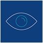 visibility icon