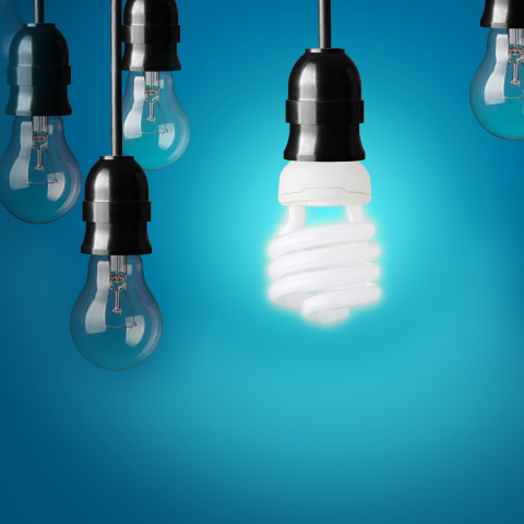 image of several light bulbs, one of them lite up